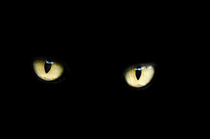 Sehen bei Nacht